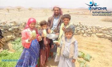 بيت أبو هاشم .. قرية نموذجية في خولان يتنافس سكانها على زراعة الخضروات المنزلية