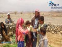 نجاح كبير لزراعة حدائق الخضروات المنزلية بخولان والطيال محافظة صنعاء (فيديو )